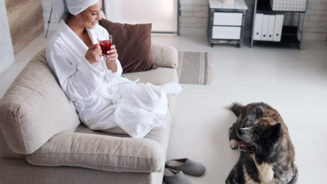 a beautiful woman is sitting in your bedroom. she finished taking a shower, wearing a bathrobe and a towel on her head. he drinks tea. her dog lies on the floor next to her - wearing a towel stock videos & royalty-free footage