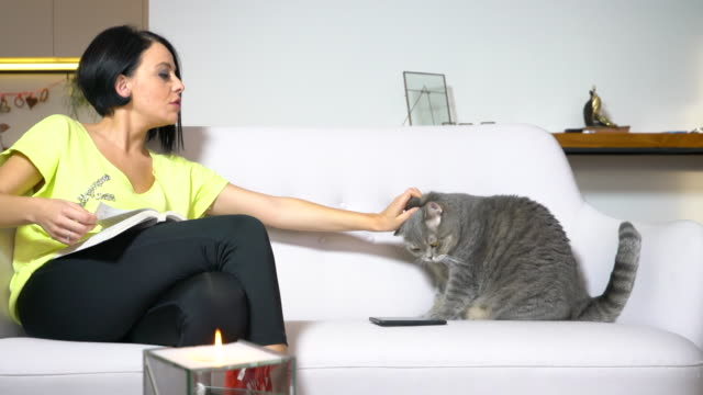 Beautiful woman loves their cat on the sofa at home