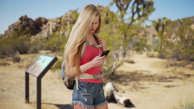 beautiful woman navigating through joshua tree national park using mobile device - joshua tree stock videos and b-roll footage