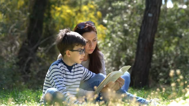 beautiful women and her son sitting in forest and reading book - one parent stock videos & royalty-free footage