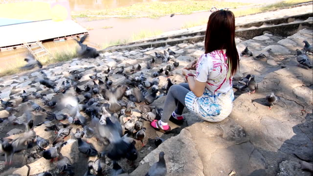 beautiful women feeding pigeons. - one baby girl only stock videos & royalty-free footage
