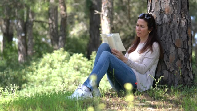 beautiful women sitting in forest and reading book - 40 44 years stock videos & royalty-free footage