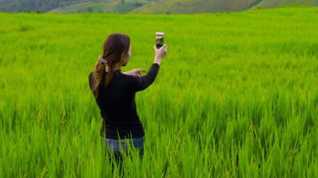 beautiful women taking selfie with smartphone at rice paddy in northern of thailand - explorer stock videos and b-roll footage