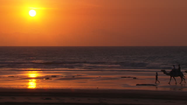 Beautiful yellow and orange sunset over ocean on an Australian Beach with reflection in wet sand silhouette of a line of camels led through along...