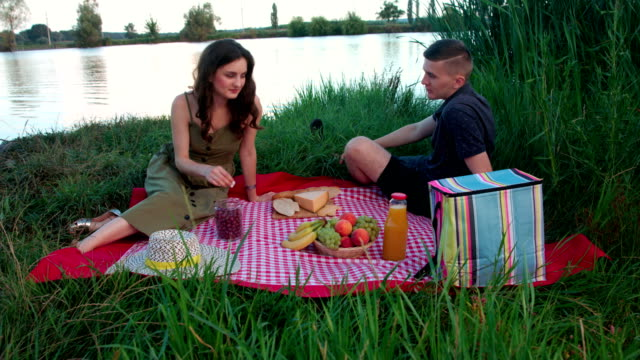 Beautiful young couple on picnic blanket
