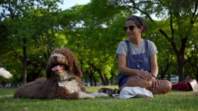 beautiful young woman enjoying relaxing at a park with a dog - dog walking stock videos & royalty-free footage