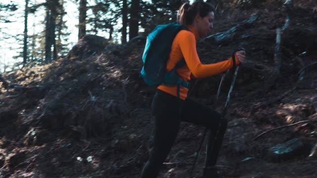 vídeos de stock, filmes e b-roll de bela jovem mulher caminhadas - montar um animal