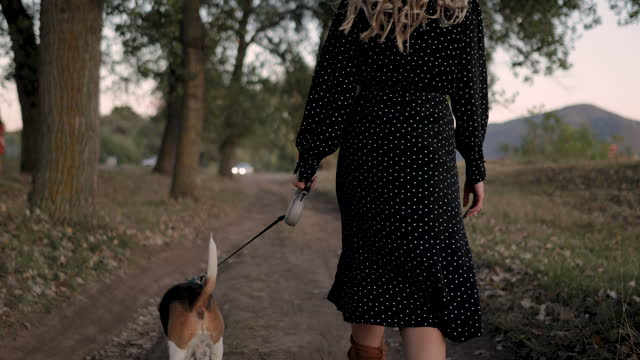 beautiful young woman walking with beagle dog by the river - lead stock videos & royalty-free footage