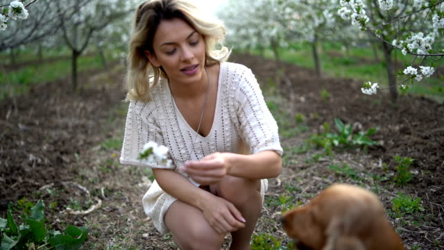 beautiful young woman with dog in blooming orchard - dress stock videos & royalty-free footage