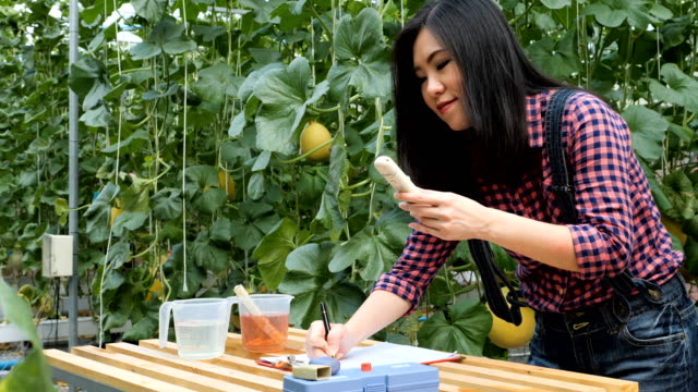 Beautiful young woman working at plant nursery and holding soil ph meter