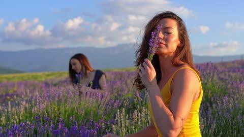vidéos et rushes de les belles jeunes femmes dans le domaine de lavande apprécient l'après-midi d'été - sentir
