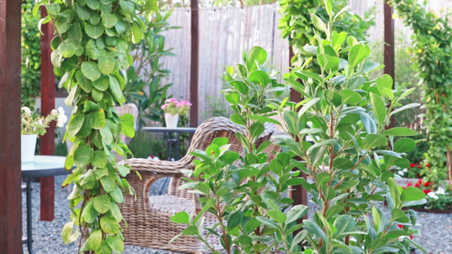 beautifully landscaped backyard patio setup - garden party stock videos & royalty-free footage
