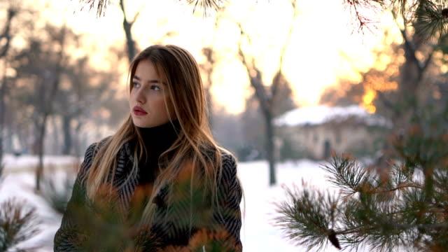 vidéos et rushes de beauté dans la neige - élégance