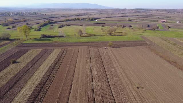 Beauty of fields 4k