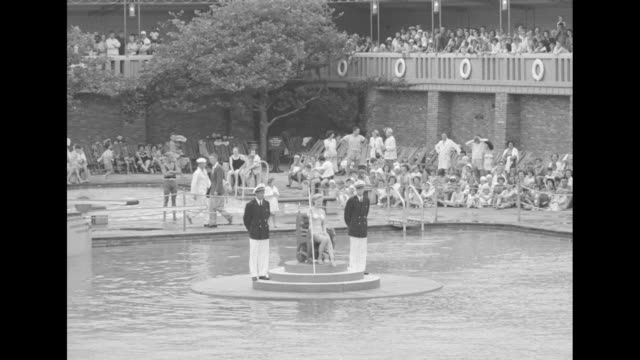 vídeos de stock, filmes e b-roll de beauty queen in bathing suit sits on chair on floating platform in swimming pool two men in boating outfits standing on either side of her crowd... - beauty queen