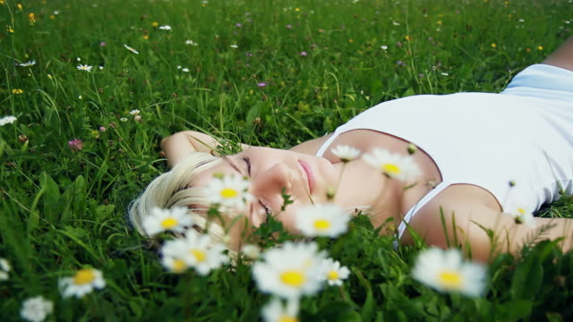 hd dolly: beauty sleep in nature - grass family stock videos & royalty-free footage