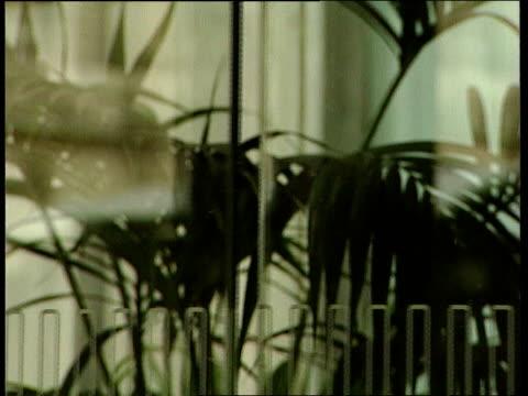 beckett interview sot electronic vulnerability will be a key concern cms glass doors slide open ms legs thru doorway cs lift indicator int cms sign... - vulnerability stock videos and b-roll footage