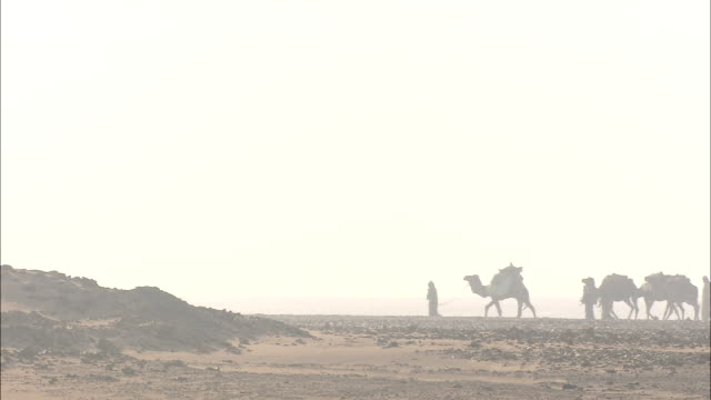 a bedouin camel caravan walks across a barren desert area at sunset. - 遊牧民族点の映像素材/bロール