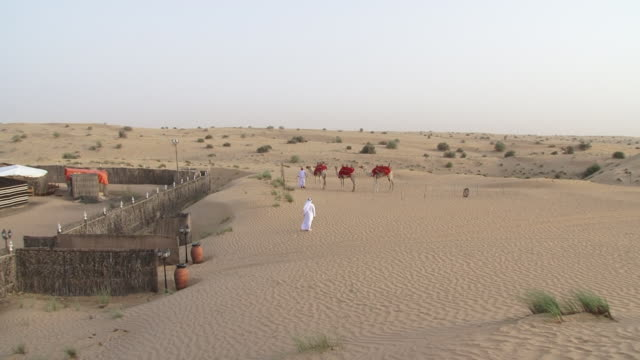 bedouin encampment. view of camels standing outside a luxury bedouin desert encampment, at dusk, for tourists seeking a desert safari adventure... - ベドウィン族点の映像素材/bロール