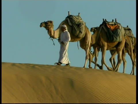 ms bedouin man leading caravan of camels across rocky sand dunes, israel - ベドウィン族点の映像素材/bロール
