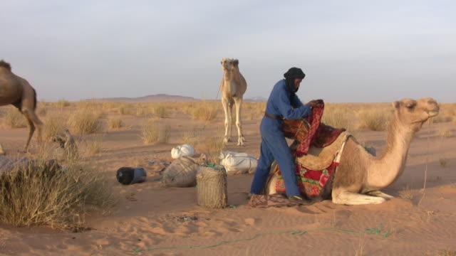 ws bedouin with camel in sahara desert / zouerat, tiris zemmour, mauritania - モーリタニア点の映像素材/bロール