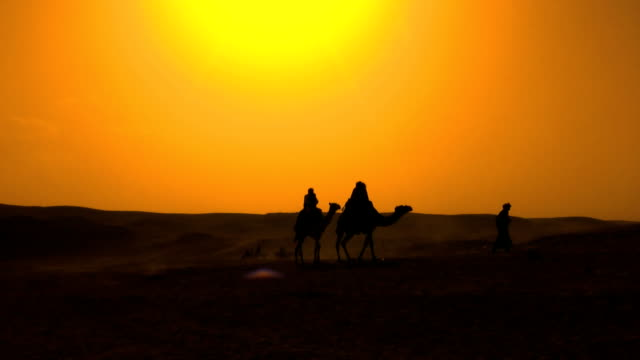 bedouins at the desert - minority groups stock videos & royalty-free footage
