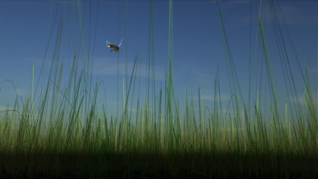 Biene fliegt über grüne Gras