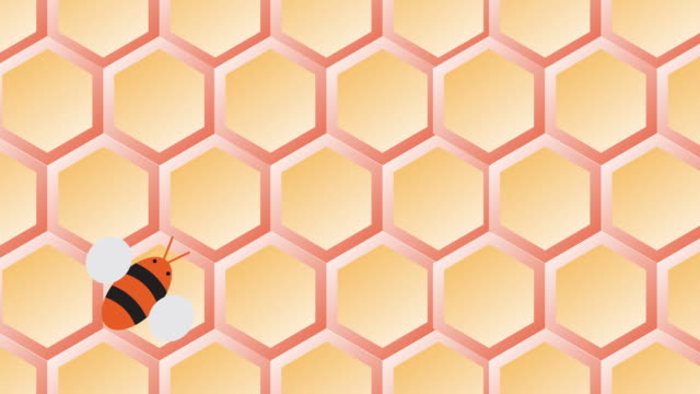 bee hive and flying bees movie transition - beehive stock videos & royalty-free footage
