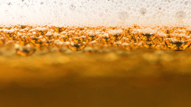 beer bubbles and foam closeup - bar drink establishment stock videos and b-roll footage