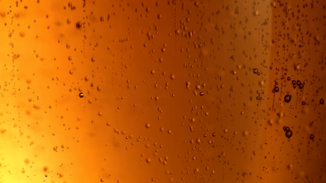 beer bubbles extreme close up - bubbles stock videos and b-roll footage