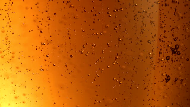 vídeos de stock e filmes b-roll de beer bubbles extreme close up - bolha estrutura física
