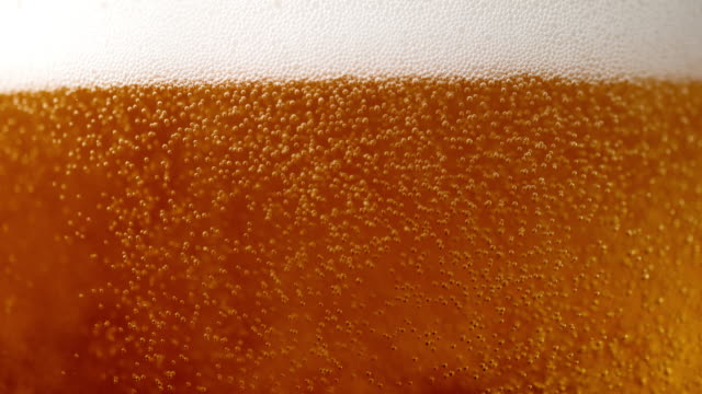 vídeos de stock e filmes b-roll de slo mo beer bubbles in a glass - beer alcohol