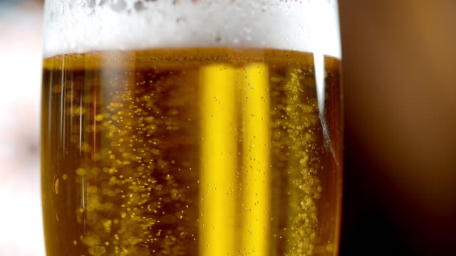 slo mo beer bubbles in a glass - pilsner stock videos & royalty-free footage
