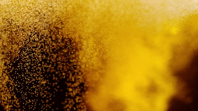 vídeos de stock e filmes b-roll de slo mo beer bubbles - beer alcohol