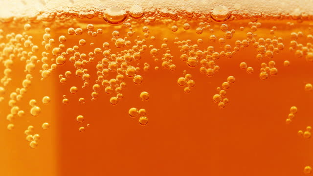 beer bubbles (hd1080) - empty beer glass stock videos and b-roll footage