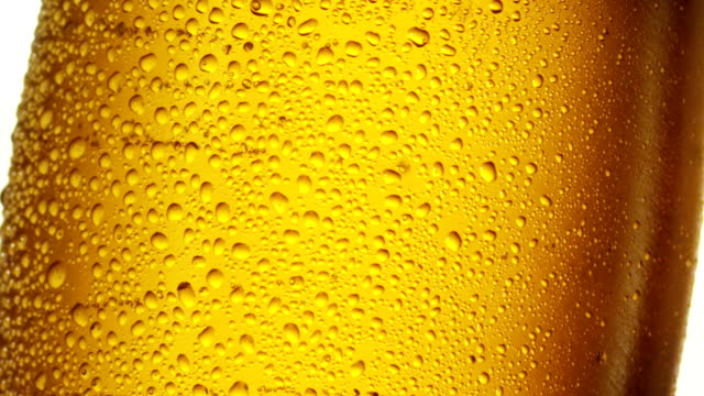beer glass macro - empty beer glass stock videos and b-roll footage