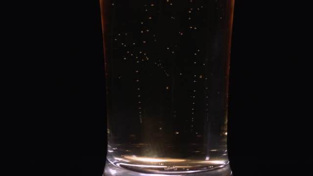 cu slo mo beer pouring into pilsner glass, forming bubbles / studio, new jersey, usa - pilsner stock videos & royalty-free footage