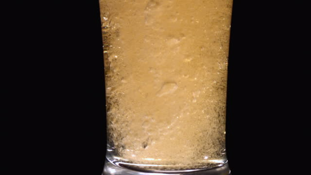 cu slo mo beer pouring into pilsner glass / studio, new jersey, usa  - pilsner stock videos & royalty-free footage