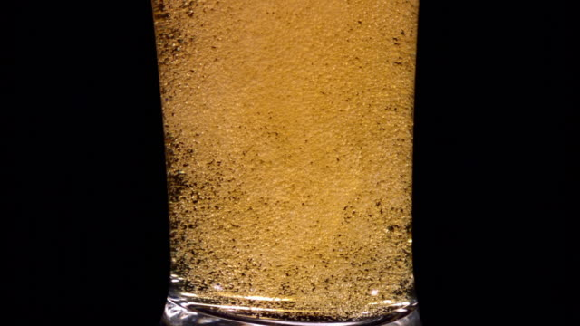 CU SLO MO Beer pouring into pilsner glass with swirling bubbles / Studio, New Jersey, USA