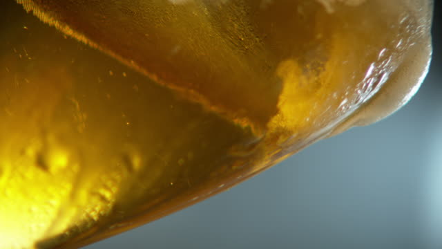 beer - empty beer glass stock videos and b-roll footage