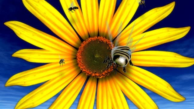 vídeos de stock, filmes e b-roll de abelhas voando de girassol - grupo médio de animais
