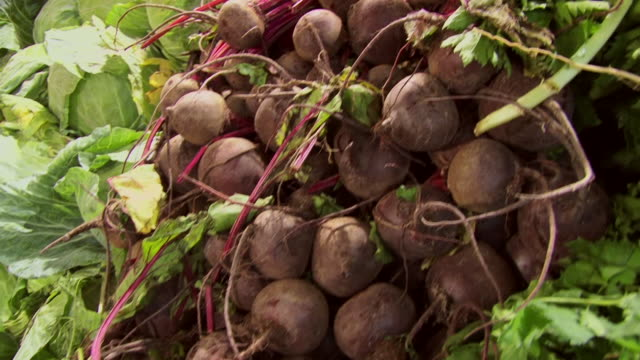 beets and other vegetables fill bins at a market. - beet stock videos & royalty-free footage