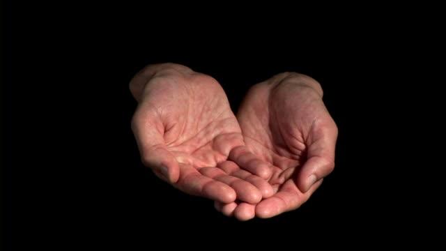 stockvideo's en b-roll-footage met hd: begging - handpalm