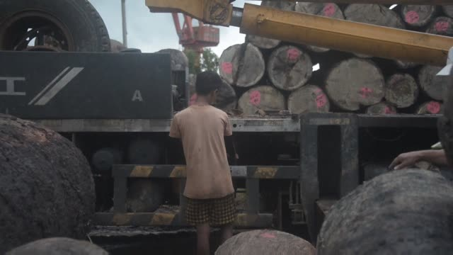 Beijing hits out at long jail sentences handed to more than 150 Chinese nationals for illegal logging in Myanmar in the latest tremor to shake...
