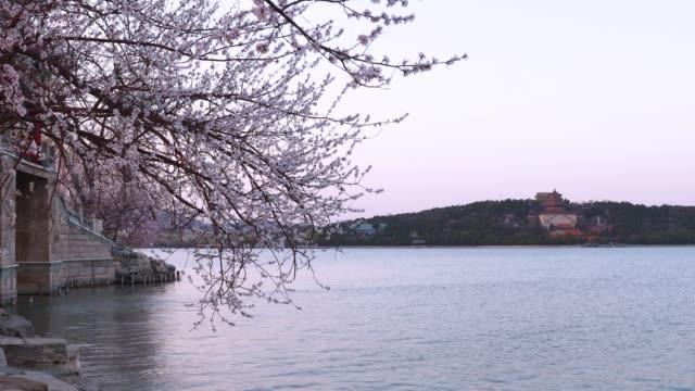 beijing summer palace - summer palace beijing stock videos & royalty-free footage
