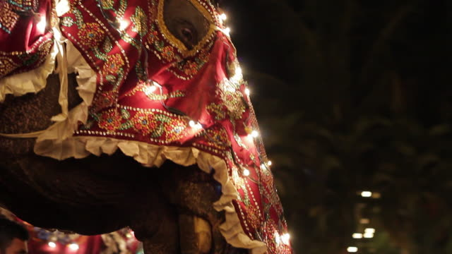 stockvideo's en b-roll-footage met ms td bejeweled and decorated elephants parading in buddhist festival or procession 'esala perahera' (festival of tooth) audio / kandy, central province, sri lanka - sri lankaanse cultuur