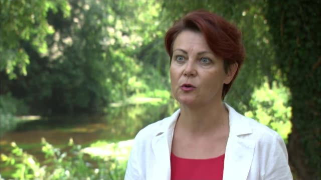 belarusian opposition leader flees to lithuania amid claims of rigged election location elena korosteleva interview excerpt sot - politics stock videos & royalty-free footage