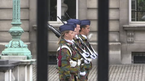 belgian soldiers outside of the royal palace of brussels in brussels, belgium. - music or celebrities or fashion or film industry or film premiere or youth culture or novelty item or vacations stock videos & royalty-free footage