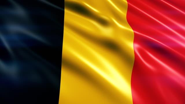 vidéos et rushes de drapeau de la belgique - drapeau national