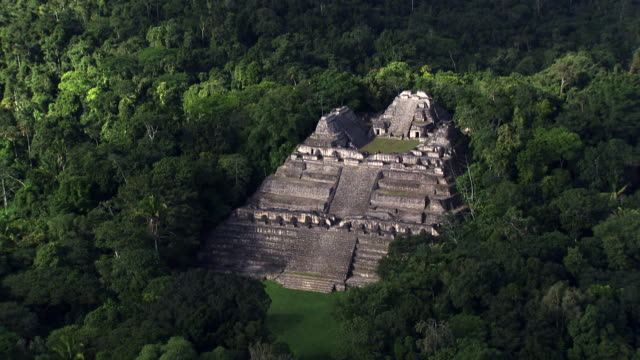 belize: caracol maya temple - latin american civilizations stock videos and b-roll footage